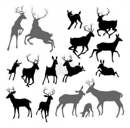 Illustration pour Chevreuil Silhouette comprenant faon, biche et cerf. Aussi deux cerfs combattant et un ensemble de groupe familial - image libre de droit