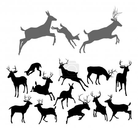 Illustration for Deer silhouettes including fawn, doe bucks and stags in various poses. Includes family group of stag doe and fawn running and jumping together - Royalty Free Image