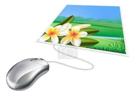 Mouse photo online internet concept