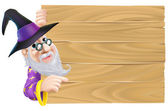 Wizard pointing at wood sign