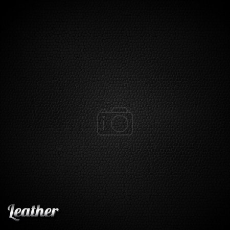 Leather black background vector