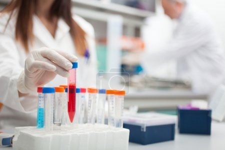 Photo pour Scientifique au travail dans un laboratoire - image libre de droit