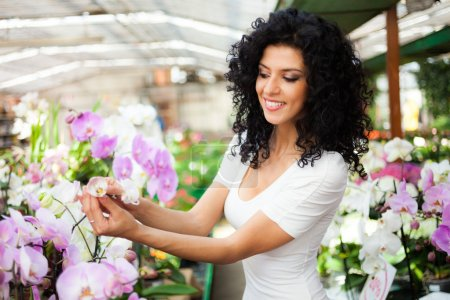 Woman looking at flowers in greenhouse