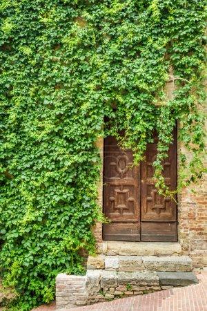 Ancient ivy-clad house with wood door