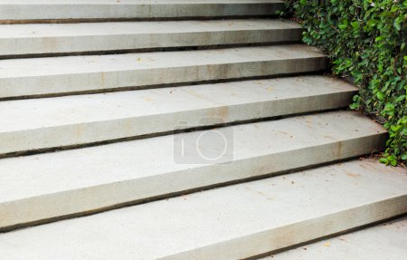 Photo for Stone stairway with green plant in garden - Royalty Free Image
