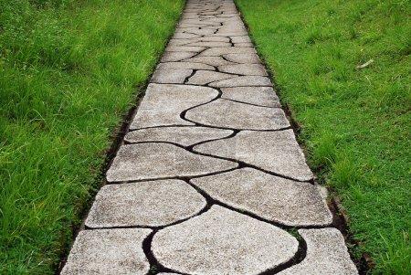 Stone path through a green grassy lawn