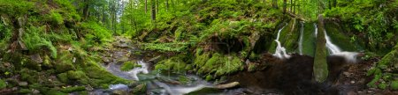 Photo pour Vue panoramique d'un magnifique méandre du ruisseau, panorama à 360 degrés . - image libre de droit