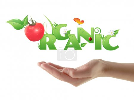 """Hand holding word """"Organic"""" ecological design"""