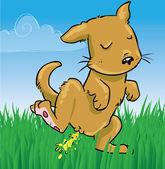 Little doggy peeing on grass
