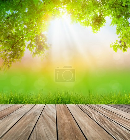 Photo for Fresh spring green grass and wood floor with green leaf , Summer time - Royalty Free Image