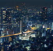 Night view of Tokyo cityscape