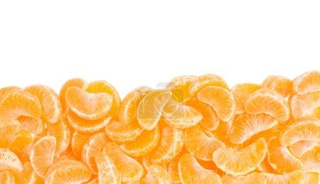 Tangerine orange segments frame, border