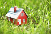 Kleine rote Haus im grünen Gras