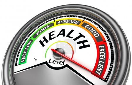 health level conceptual meter