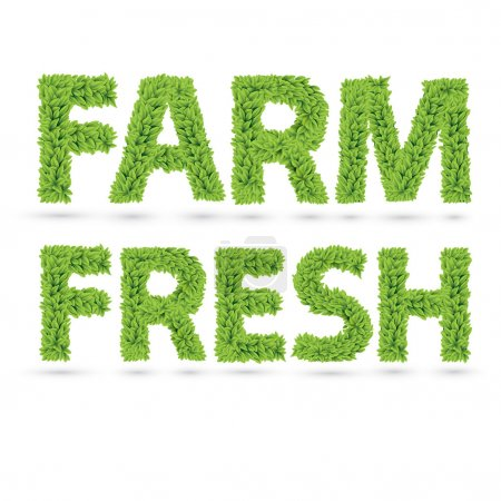 Illustration for Farm fresh text of green leaves - Royalty Free Image