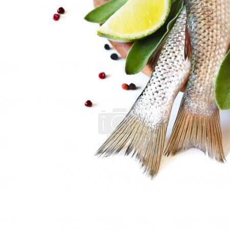 Fresh fish.