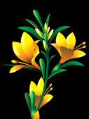 yellow oleander flower plant