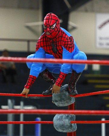Wrestling spiderman costume wrestler