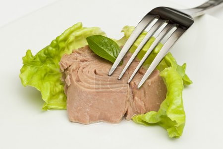 Photo for Canned tuna chunks with green salad and fork - Royalty Free Image