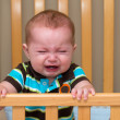 Crying unhappy baby standing in his cri...