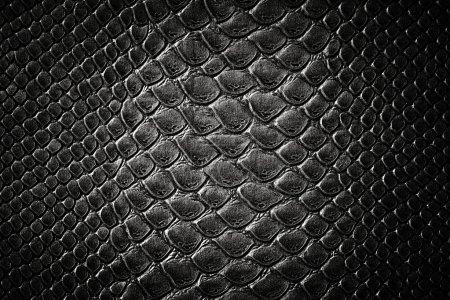 Crocodile black skin leather texture...