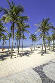 Copacabana beach with palms and sidewalk mosaic in Rio de Janeiro