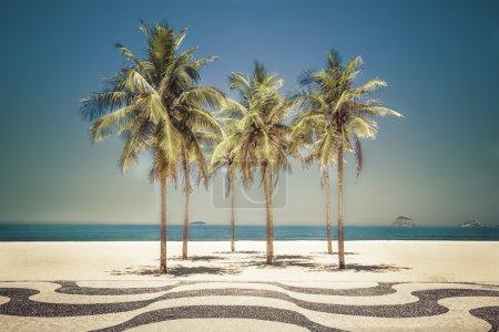 Palms on Copacabana Beach