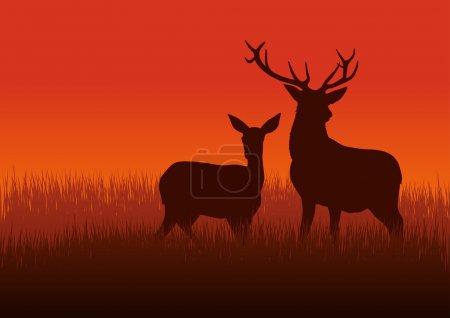 Illustration pour Illustration en silhouette d'un cerf et d'une biche sur prairie - image libre de droit