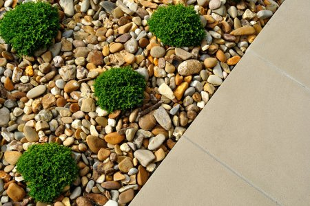 Photo pour Combinaisons d'aménagement paysager de plantes, de cailloux et de pavés - image libre de droit