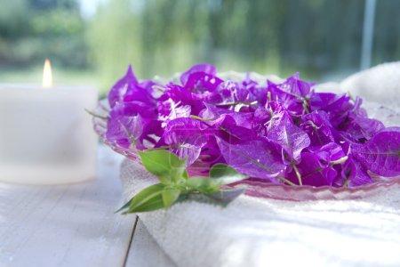 Photo pour Fleur De Bougainvilliers Dans Le Contexte D'un Spa - image libre de droit