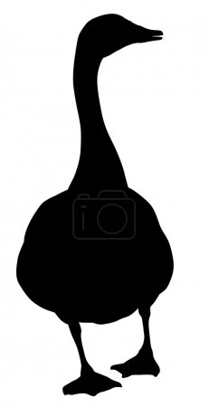 Goose silhouette