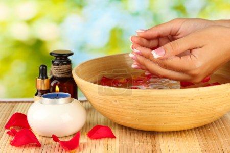 Photo pour Soins spa pour les mains féminines, sur fond vert - image libre de droit