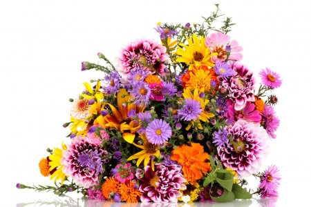 Photo for Beautiful bouquet of bright flowers isolated on white - Royalty Free Image