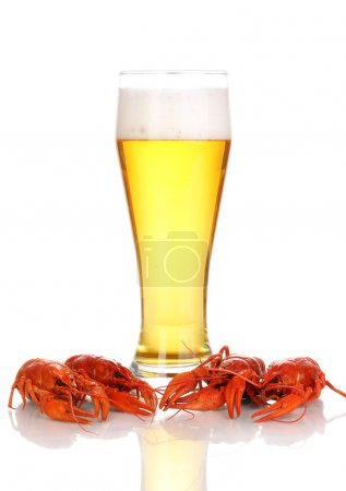 Photo for Tasty boiled crayfishes and beer isolated on white - Royalty Free Image