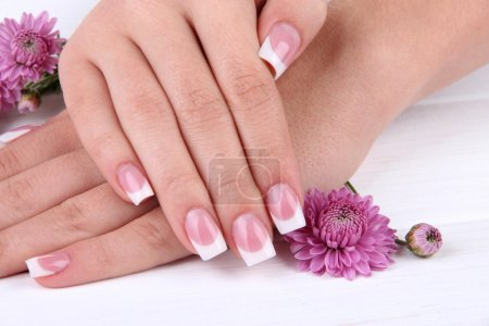 Photo for Woman hands with french manicure and flowers on white wooden background - Royalty Free Image
