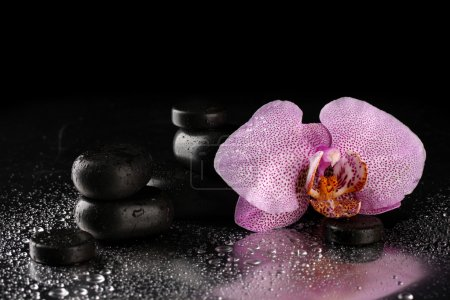 Spa stones and orchid flower, on wet grey background