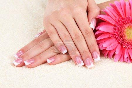 Photo pour Mains de femme avec français manucure et de fleurs sur la serviette - image libre de droit