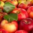 juicy red apples with green leaves, close up