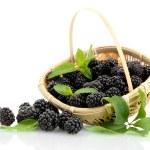 Beautiful blackberries with leaves in basket isola...