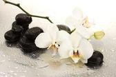 Wellness kameny a květy orchidejí, izolovaných na bílém