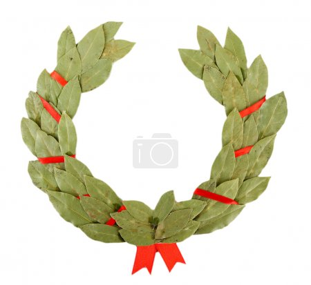 Laurel wreath isolated on white