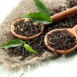 Dry tea with green leaves in wooden spoons, isolat...