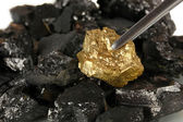 Tweezers holding golden nugget on coals background close-up