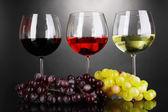 Sortiment vín v brýlích na šedém pozadí