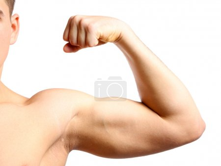 Photo for Young muscular man hand with biceps, isolated on white - Royalty Free Image