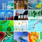 Collage di laboratorio