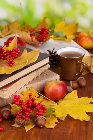 Books and autumn leaves on wooden table on natural background