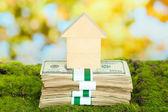 Dřevěný dům na baleních dolarů na trávě na přírodní pozadí