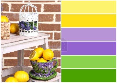 Photo pour Nature morte avec citrons frais et lavande. palette de couleurs avec des échantillons gratuits - image libre de droit