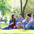 Happy friends on picnic in park...